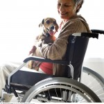 Senior Woman with a Dog in a Wheelchair